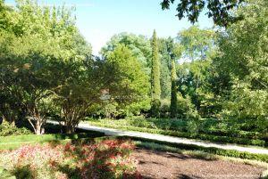 Foto Real Jardín Botánico 12