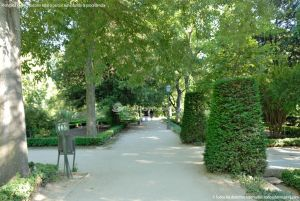 Foto Real Jardín Botánico 20