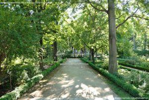 Foto Real Jardín Botánico 33