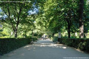 Foto Real Jardín Botánico 39