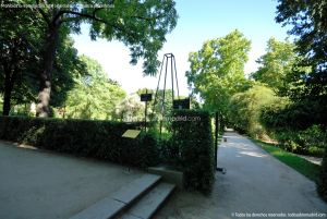 Foto Real Jardín Botánico 40