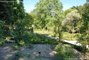 Foto Real Jardín Botánico 43