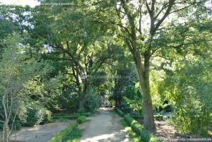 Foto Real Jardín Botánico 55
