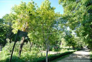 Foto Real Jardín Botánico 56