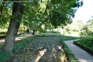 Foto Real Jardín Botánico 61