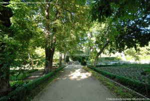 Foto Real Jardín Botánico 62