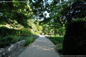 Foto Real Jardín Botánico 63
