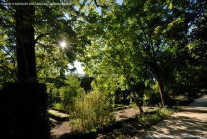 Foto Real Jardín Botánico 70