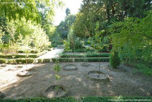 Foto Real Jardín Botánico 71