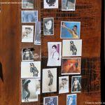 Foto Homenaje espontáneo a Michael Jackson 8