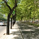 Foto Paseo de la Castellana