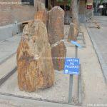 Foto Jardín de Piedras 1