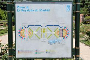 Foto Rosaleda Ramón Ortiz 9