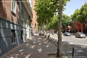 Foto Paseo de la Reina Cristina 2
