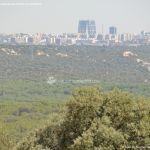 Foto Monte de El Pardo 5