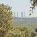 Foto Monte de El Pardo 7