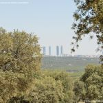 Foto Monte de El Pardo 8