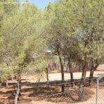 Foto Monte de El Pardo 18