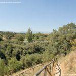 Foto Monte de El Pardo 47