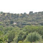 Foto Monte de El Pardo 48