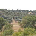 Foto Monte de El Pardo 49