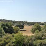 Foto Monte de El Pardo 51