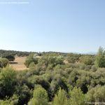 Foto Monte de El Pardo 53