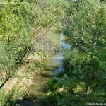 Foto Río Manzanares en el Monte de El Pardo 8