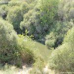 Foto Río Manzanares en el Monte de El Pardo 9