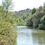 Foto Río Manzanares en el Monte de El Pardo 12