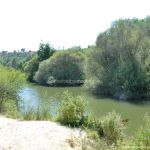 Foto Río Manzanares en el Monte de El Pardo 14