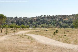 Foto Área Recreativa en el Monte de El Pardo 1
