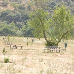 Foto Área Recreativa en el Monte de El Pardo 2