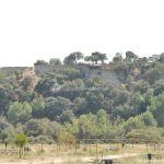 Foto Área Recreativa en el Monte de El Pardo 4