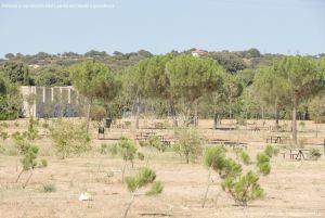 Foto Área Recreativa en el Monte de El Pardo 7