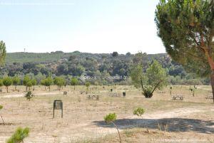 Foto Área Recreativa en el Monte de El Pardo 9