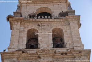 Foto Catedral Magistral de los Santos Niños Justo y Pastor 13