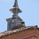 Foto Colegio Convento de Trinitarios Descalzos 32