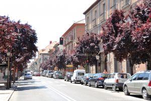 Foto Calle de Libreros 10