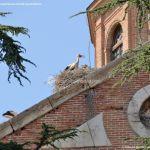 Foto Monasterio Cisterciense de San Bernardo 29