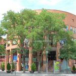 Foto Ayuntamiento de Coslada 7