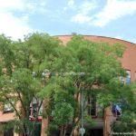 Foto Ayuntamiento de Coslada 10