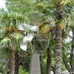 Foto Escultura Avenida de la Constitución 4