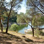 Foto Embalse Pantano de San Juan en Pelayos 10