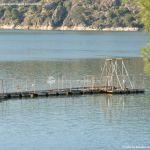 Foto Embalse Pantano de San Juan en Pelayos 11
