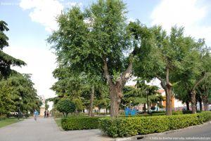 Foto Plaza de Fernando VI 4