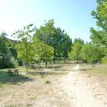 Foto Área Recreativa Laguna de los Patos 15