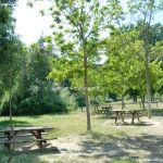 Foto Área Recreativa Laguna de los Patos 18