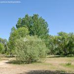 Foto Área Recreativa Laguna de los Patos 20