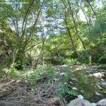 Foto Río Guadalix de San Agustin del Guadalix 7